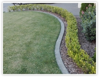 Concrete Edging Tauranga Garden Curbing Bay Of Plenty