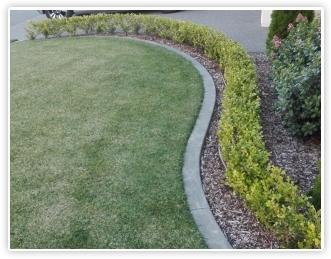 Concrete Edging Tauranga Garden Curbing Bay Of Plenty - Diy concrete garden edging